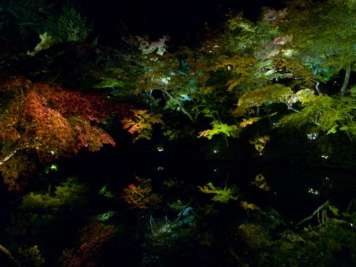 http://photo-kenji.com/Diary/images/20131107_Kyoto_002_m.jpg