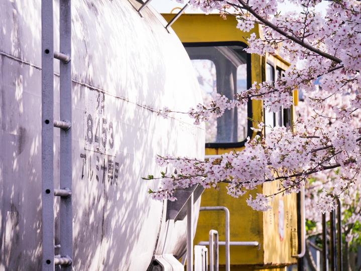 http://photo-kenji.com/Diary/images/20150404_0056.jpg